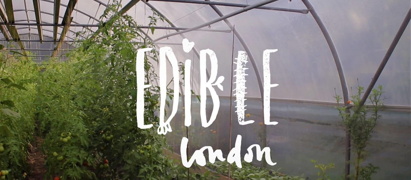 First COVID-19 fund grant goes to Edible London